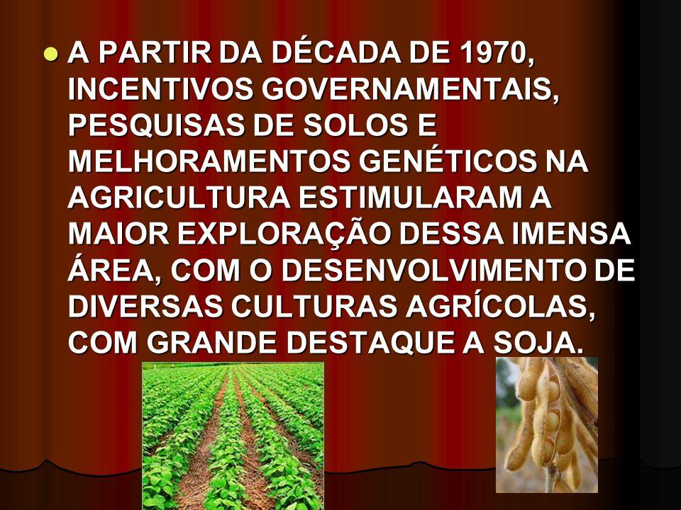 A PARTIR DA DÉCADA DE 1970, INCENTIVOS GOVERNAMENTAIS, PESQUISAS DE SOLOS E MELHORAMENTOS GENÉTICOS NA AGRICULTURA ESTIMULARAM A MAIOR EXPLORAÇÃO DESSA IMENSA ÁREA, COM O DESENVOLVIMENTO DE DIVERSAS CULTURAS AGRÍCOLAS, COM GRANDE DESTAQUE A SOJA.