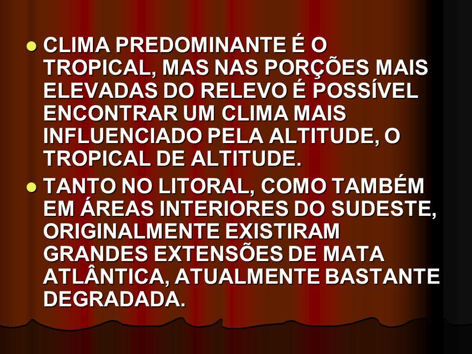 CLIMA PREDOMINANTE É O TROPICAL, MAS NAS PORÇÕES MAIS ELEVADAS DO RELEVO É POSSÍVEL ENCONTRAR UM CLIMA MAIS INFLUENCIADO PELA ALTITUDE, O TROPICAL DE