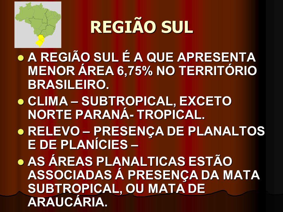 REGIÃO SUL A REGIÃO SUL É A QUE APRESENTA MENOR ÁREA 6,75% NO TERRITÓRIO BRASILEIRO. A REGIÃO SUL É A QUE APRESENTA MENOR ÁREA 6,75% NO TERRITÓRIO BRA