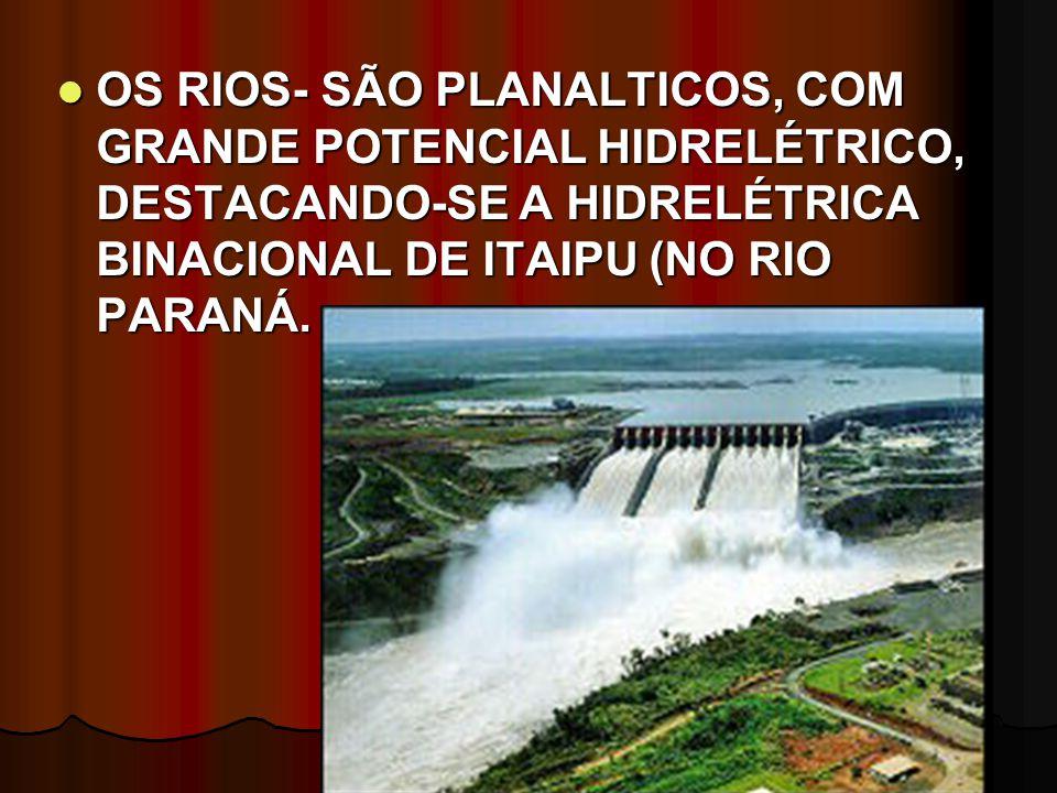 OS RIOS- SÃO PLANALTICOS, COM GRANDE POTENCIAL HIDRELÉTRICO, DESTACANDO-SE A HIDRELÉTRICA BINACIONAL DE ITAIPU (NO RIO PARANÁ.