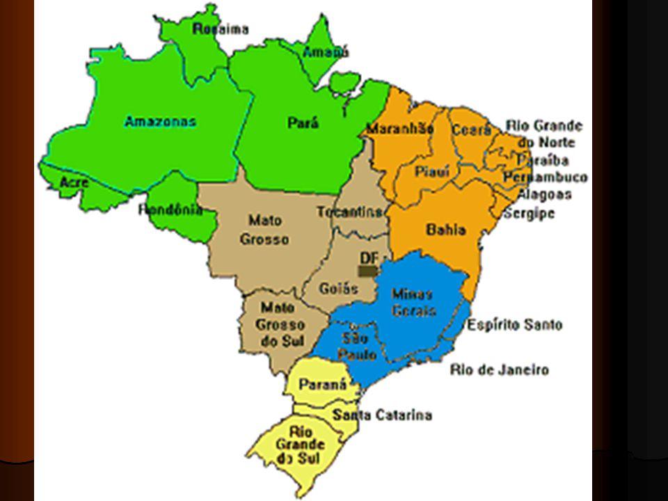 NORTE: ÁREA DE PREDOMÍNIO DO CLIMA EQUATORIAL E DA FLORESTA AMAZÔNICA NORTE: ÁREA DE PREDOMÍNIO DO CLIMA EQUATORIAL E DA FLORESTA AMAZÔNICA