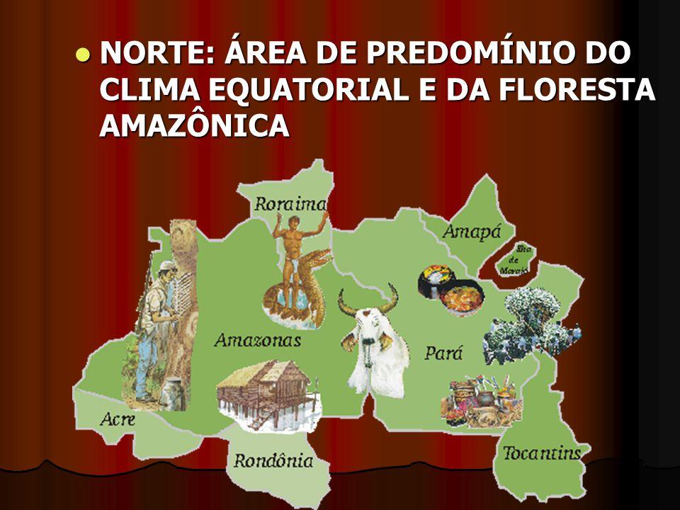 REGIÃO SUL A REGIÃO SUL É A QUE APRESENTA MENOR ÁREA 6,75% NO TERRITÓRIO BRASILEIRO.
