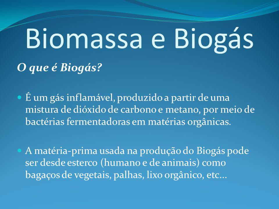 Biomassa e Biogás O que é Biogás.