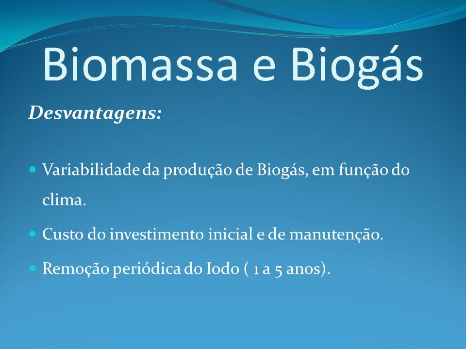 Biomassa e Biogás Desvantagens: Variabilidade da produção de Biogás, em função do clima.