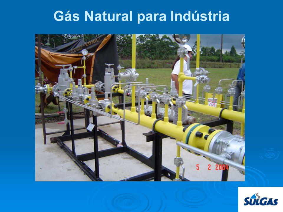 Gás Natural para Indústria