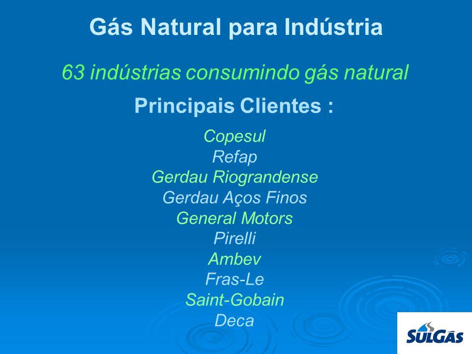 63 indústrias consumindo gás natural Principais Clientes : Copesul Refap Gerdau Riograndense Gerdau Aços Finos General Motors Pirelli Ambev Fras-Le Saint-Gobain Deca