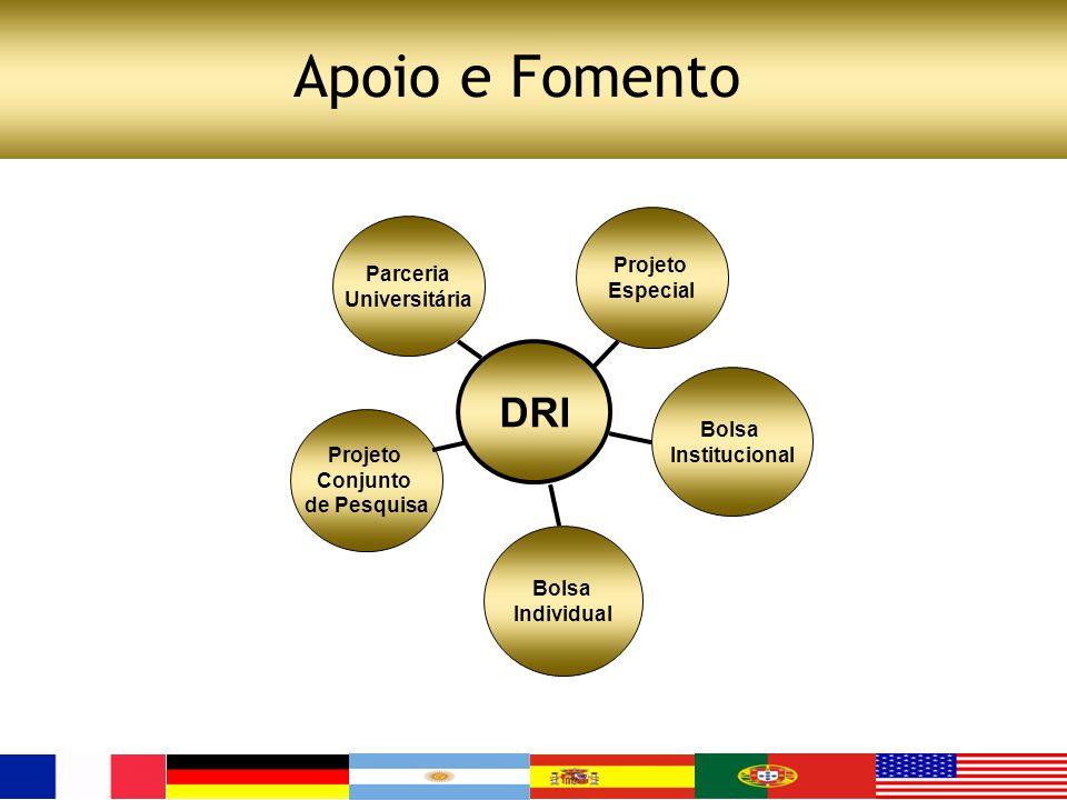 Apoio e Fomento Projeto Conjunto de Pesquisa Parceria Universitária Bolsa Individual DRI Bolsa Institucional Projeto Especial