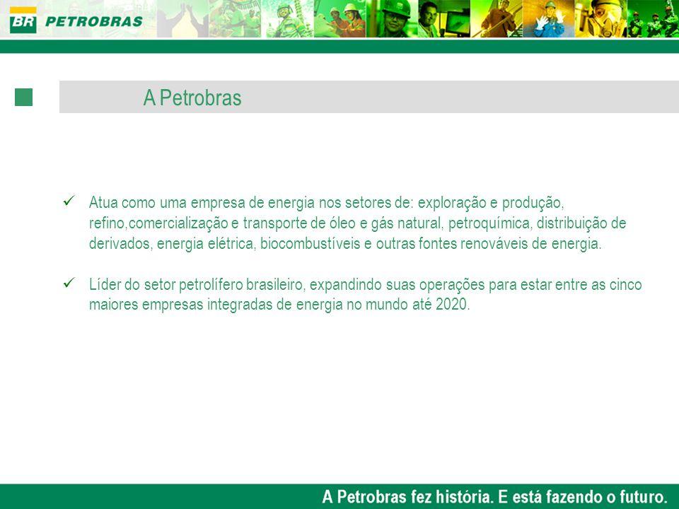 OBJETIVOS ESTRATÉGICOS Competências Impulsionando as Estratégias Comprometimento com a sustentabilidade PROJETOS ESTRATÉGICOS Assegurar que a Petrobras disponha das competências necessárias às suas estratégias.