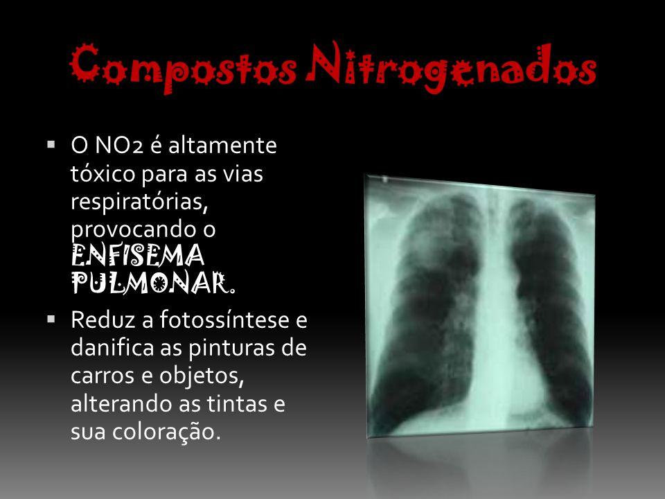 Monóxido de Carbono É o poluente que aparece em menor quantidade no Ar das grandes cidades.