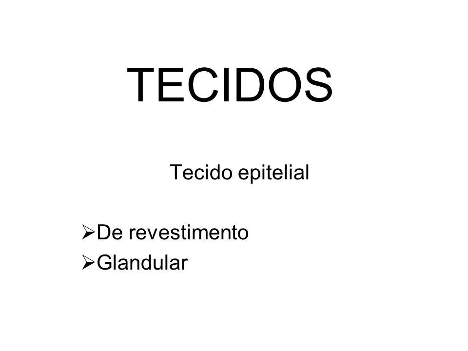 TECIDOS Tecido epitelial De revestimento Glandular
