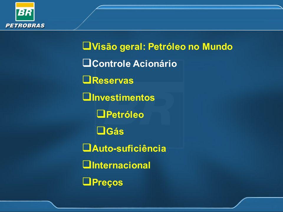 Plano de Investimentos 2004-2010 US$ 53,6 bilhões no período 2004-2010, representando um investimento médio anual de US$ 6,6 bilhões no país e US$ 1,1 bilhão no exterior.