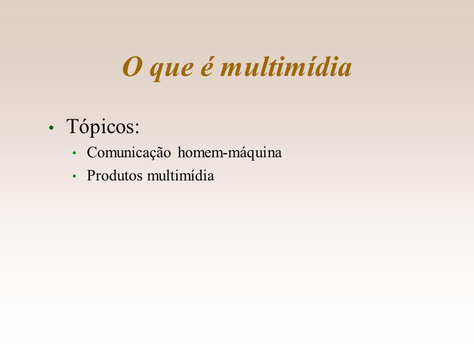 Produtos multimídia Tipos de produtos multimídia: títulos; aplicativos; sítios. 13