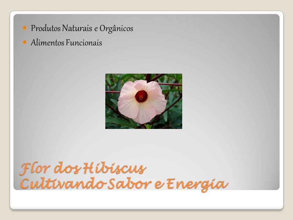 Flor dos Hibiscus Cultivando Sabor e Energia Produtos Naturais e Orgânicos Alimentos Funcionais