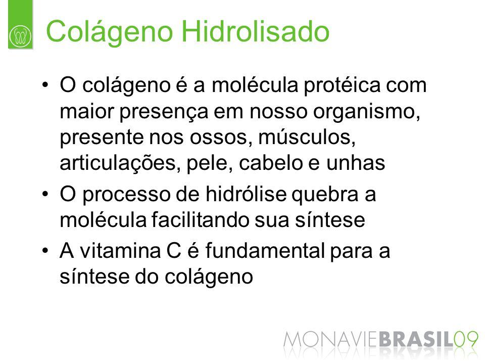 Colágeno Hidrolisado O colágeno é a molécula protéica com maior presença em nosso organismo, presente nos ossos, músculos, articulações, pele, cabelo