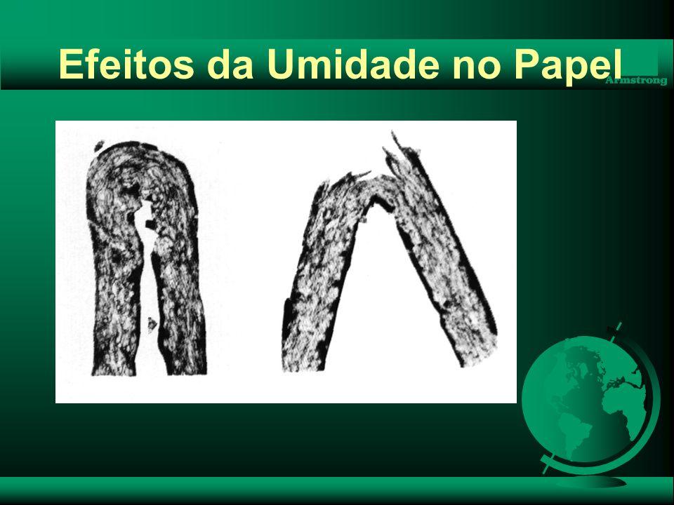Como Umidade afeta os Materiais F Produtos de Madeira –Empenamento –Rachaduras –Deterioração