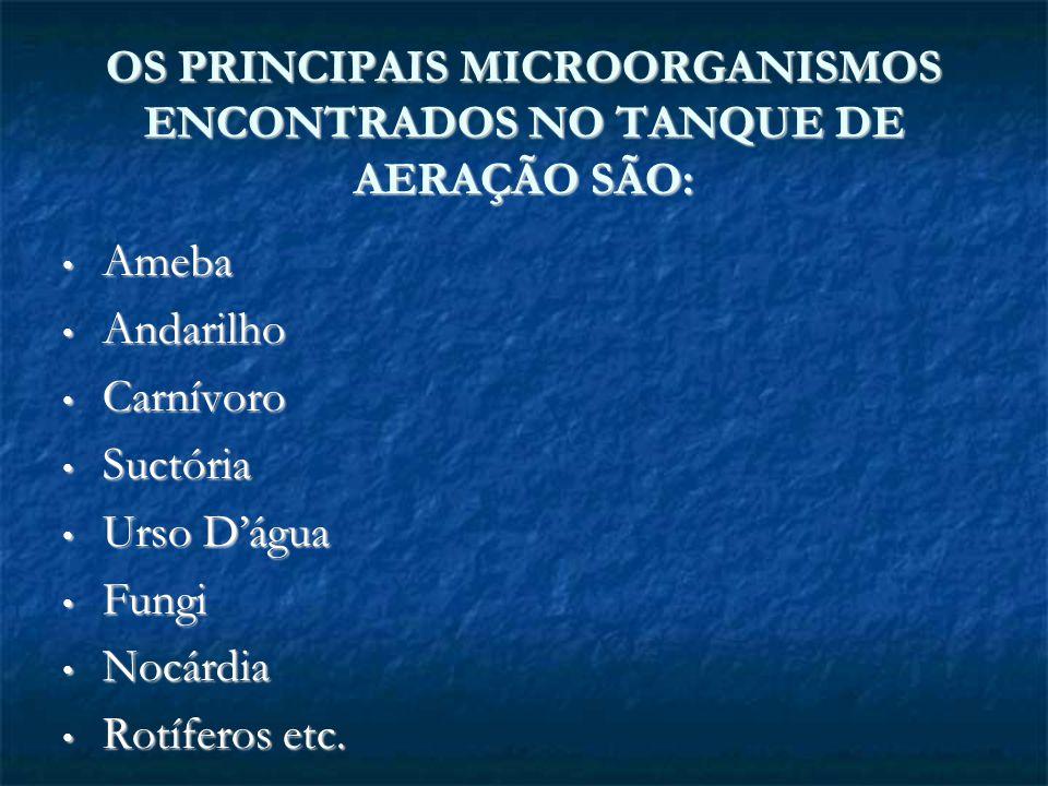 OS PRINCIPAIS MICROORGANISMOS ENCONTRADOS NO TANQUE DE AERAÇÃO SÃO: Ameba Ameba Andarilho Andarilho Carnívoro Carnívoro Suctória Suctória Urso Dágua U