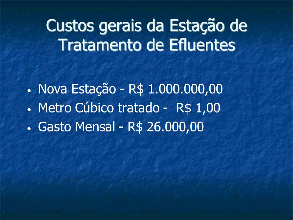 Custos gerais da Estação de Tratamento de Efluentes Nova Estação - R$ 1.000.000,00 Metro Cúbico tratado - R$ 1,00 Gasto Mensal - R$ 26.000,00