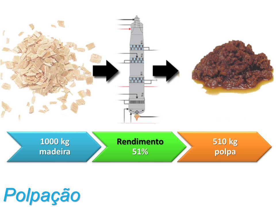 Polpação 1000 kg madeira Rendimento 51% 510 kg polpa