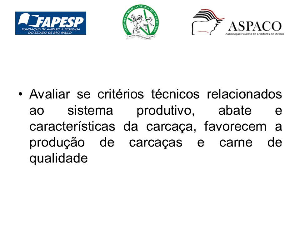 Avaliar se critérios técnicos relacionados ao sistema produtivo, abate e características da carcaça, favorecem a produção de carcaças e carne de quali