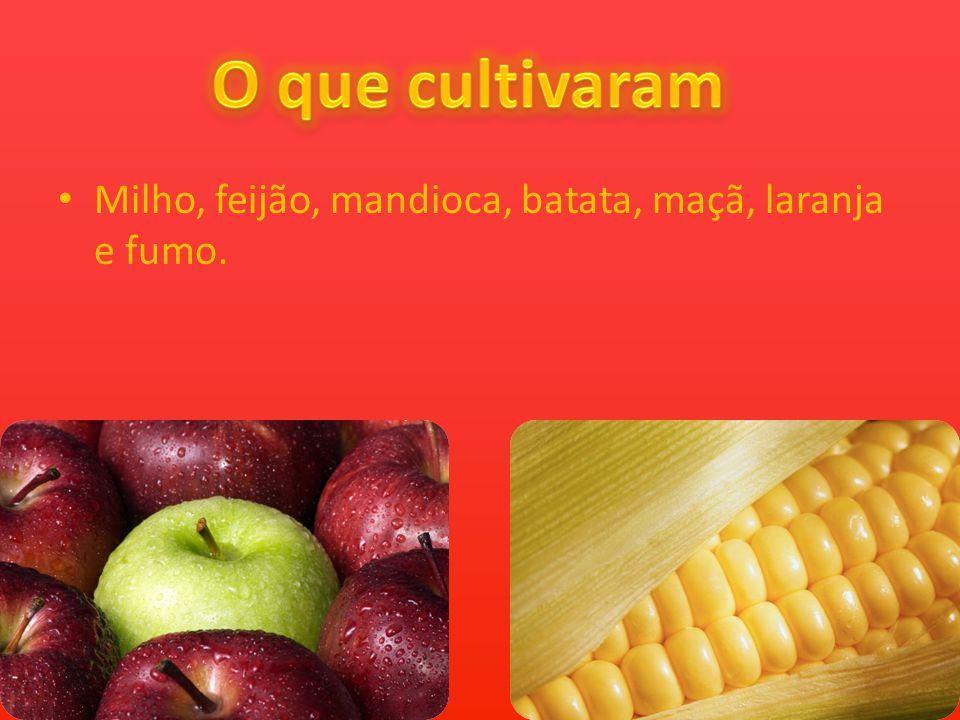 Milho, feijão, mandioca, batata, maçã, laranja e fumo.