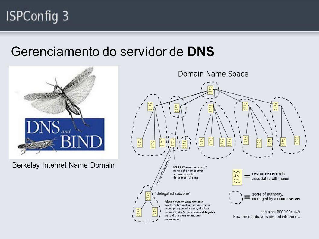 Gerenciamento do servidor de DNS Berkeley Internet Name Domain
