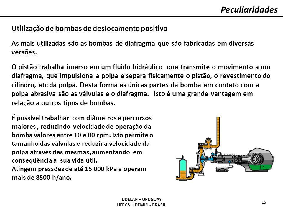 Peculiaridades UDELAR – URUGUAY UFRGS – DEMIN - BRASIL 15 Utilização de bombas de deslocamento positivo As mais utilizadas são as bombas de diafragma