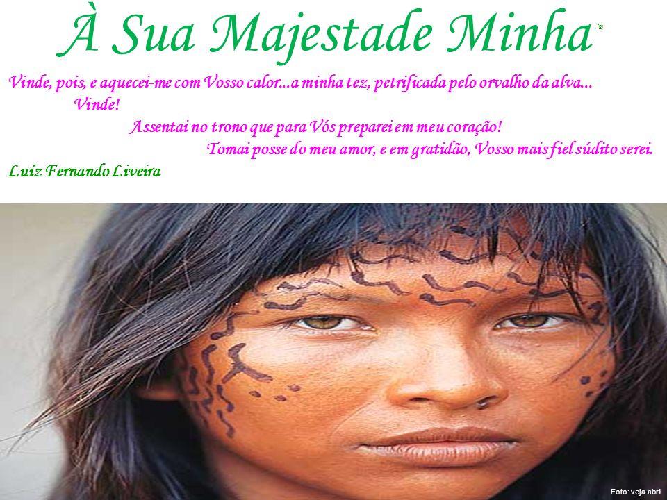A preservação da Amazônia e suas riquezas depende do esforço de todos nós.