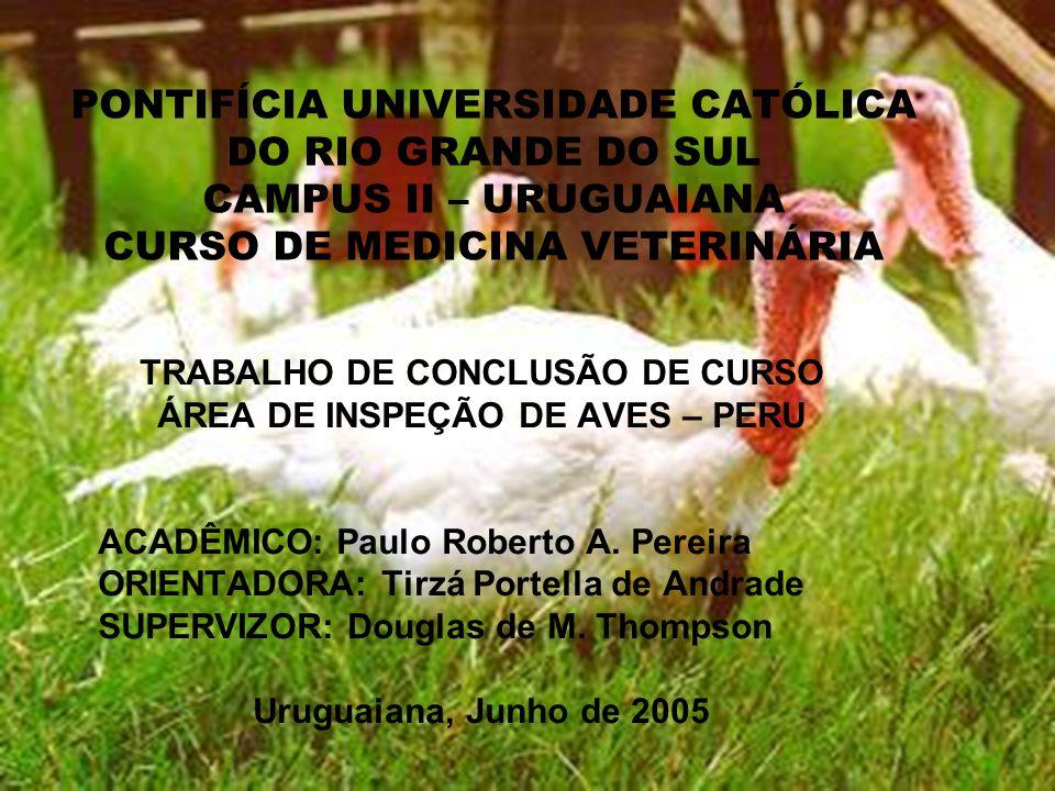 PONTIFÍCIA UNIVERSIDADE CATÓLICA DO RIO GRANDE DO SUL CAMPUS II – URUGUAIANA CURSO DE MEDICINA VETERINÁRIA TRABALHO DE CONCLUSÃO DE CURSO ÁREA DE INSPEÇÃO DE AVES – PERU ACADÊMICO: Paulo Roberto A.