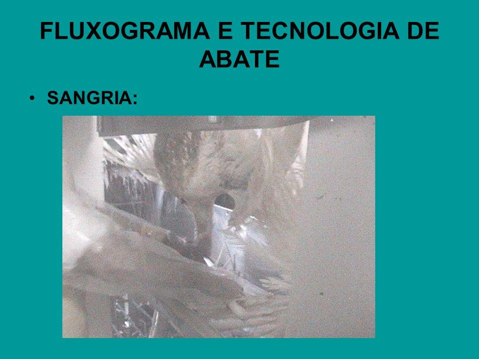 FLUXOGRAMA E TECNOLOGIA DE ABATE SANGRIA: