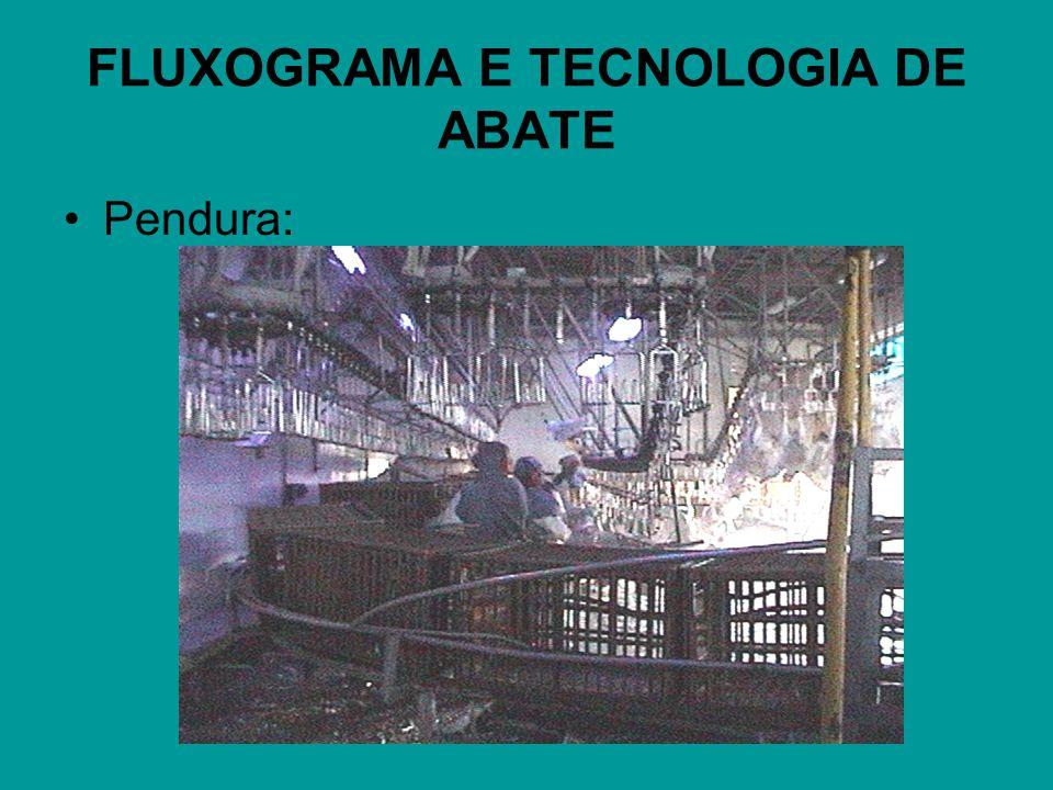 FLUXOGRAMA E TECNOLOGIA DE ABATE Pendura: