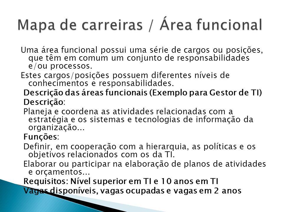 Uma área funcional possui uma série de cargos ou posições, que têm em comum um conjunto de responsabilidades e/ou processos. Estes cargos/posições pos