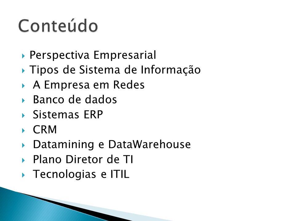 Perspectiva Empresarial Tipos de Sistema de Informação A Empresa em Redes Banco de dados Sistemas ERP CRM Datamining e DataWarehouse Plano Diretor de