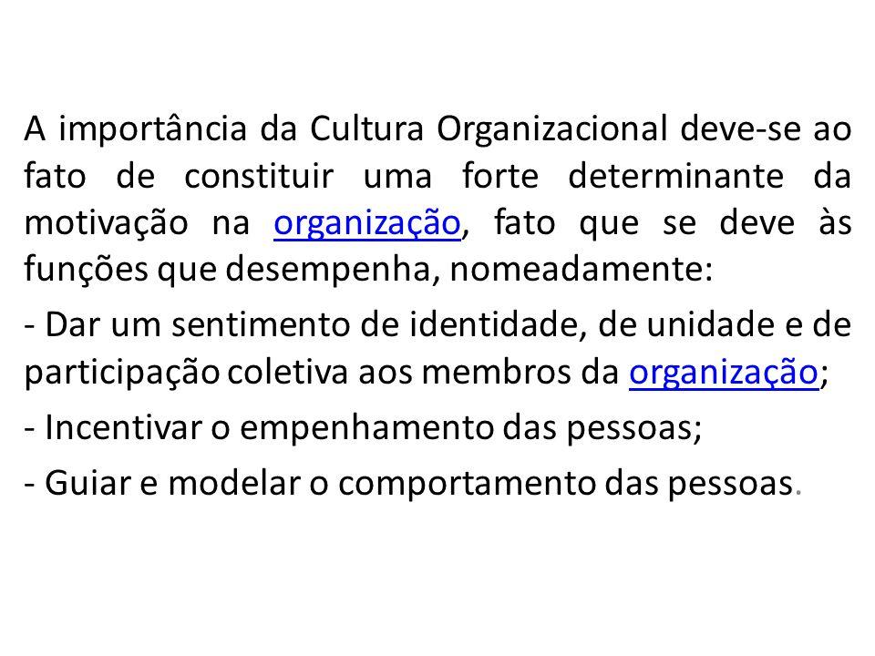 A importância da Cultura Organizacional deve-se ao fato de constituir uma forte determinante da motivação na organização, fato que se deve às funções