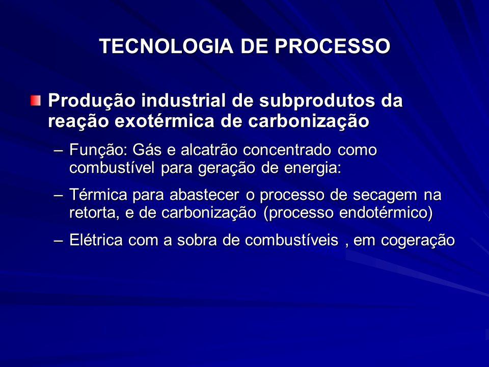 TECNOLOGIA DE PROCESSO Produção industrial de subprodutos da reação exotérmica de carbonização –Função: Gás e alcatrão concentrado como combustível pa