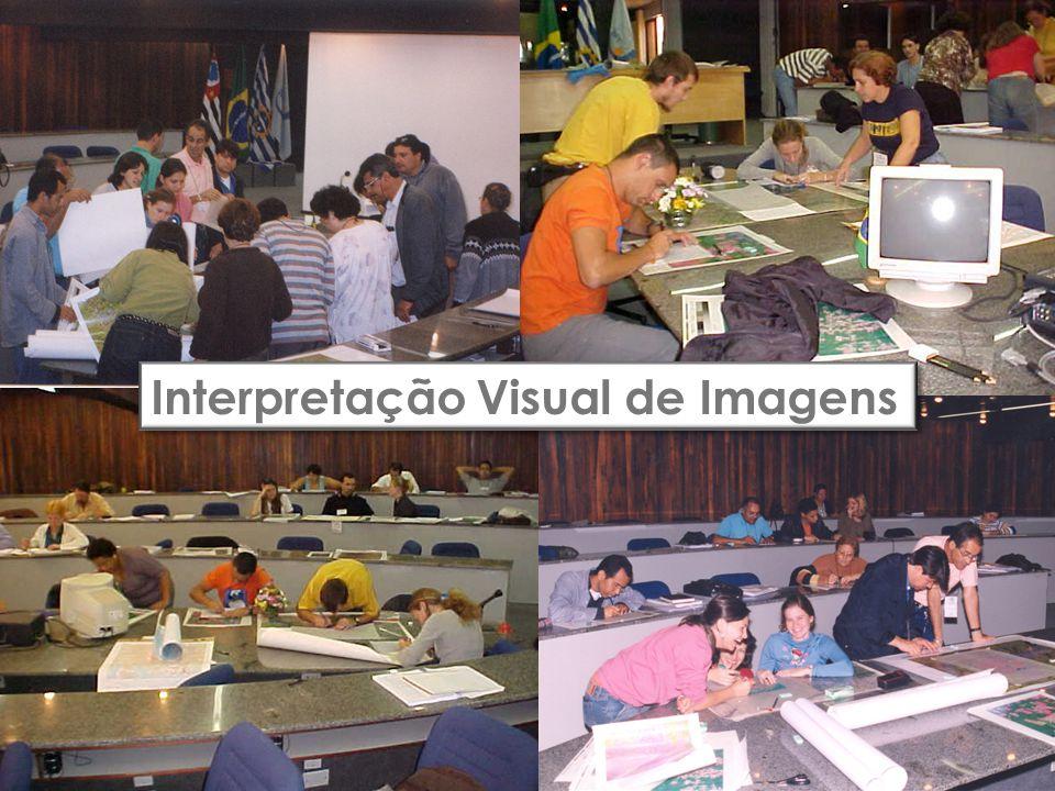 Interpretação Visual de Imagens