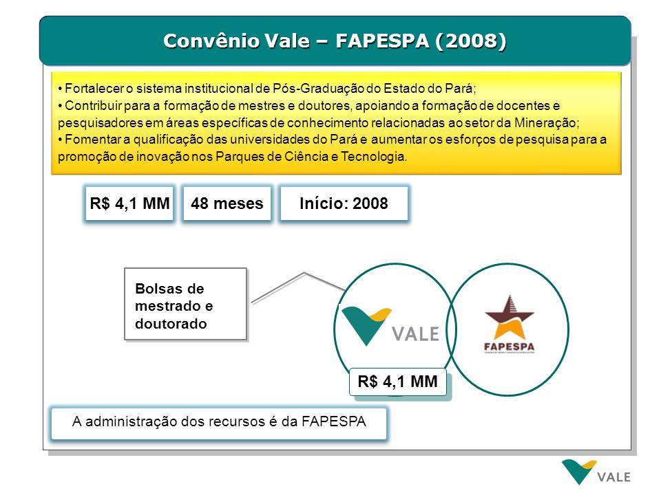 Convênio Vale – FAPESPA (2008) 48 meses R$ 4,1 MM Bolsas de mestrado e doutorado Início: 2008 R$ 4,1 MM Fortalecer o sistema institucional de Pós-Grad