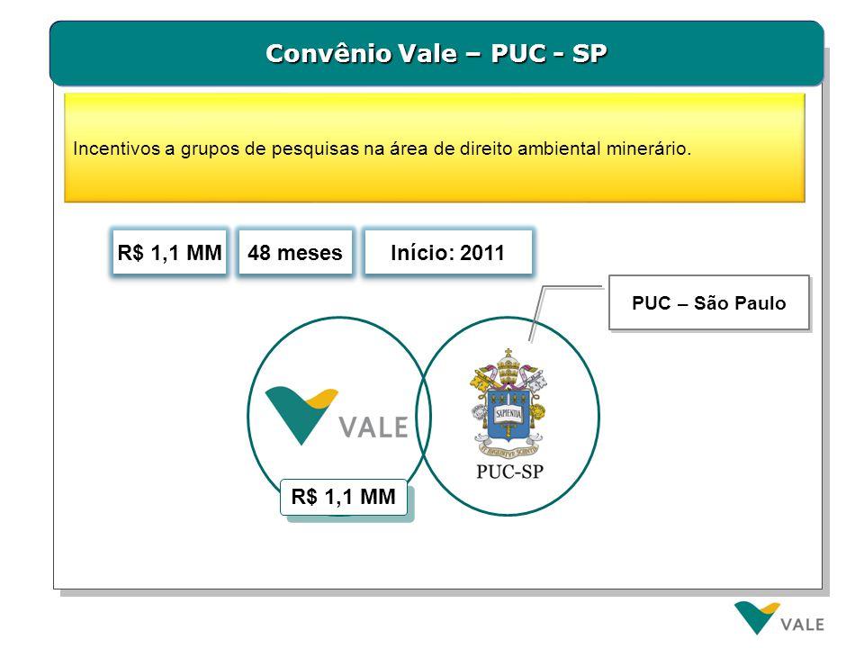 Convênio Vale – PUC - SP Incentivos a grupos de pesquisas na área de direito ambiental minerário. 48 meses R$ 1,1 MM PUC – São Paulo Início: 2011 R$ 1