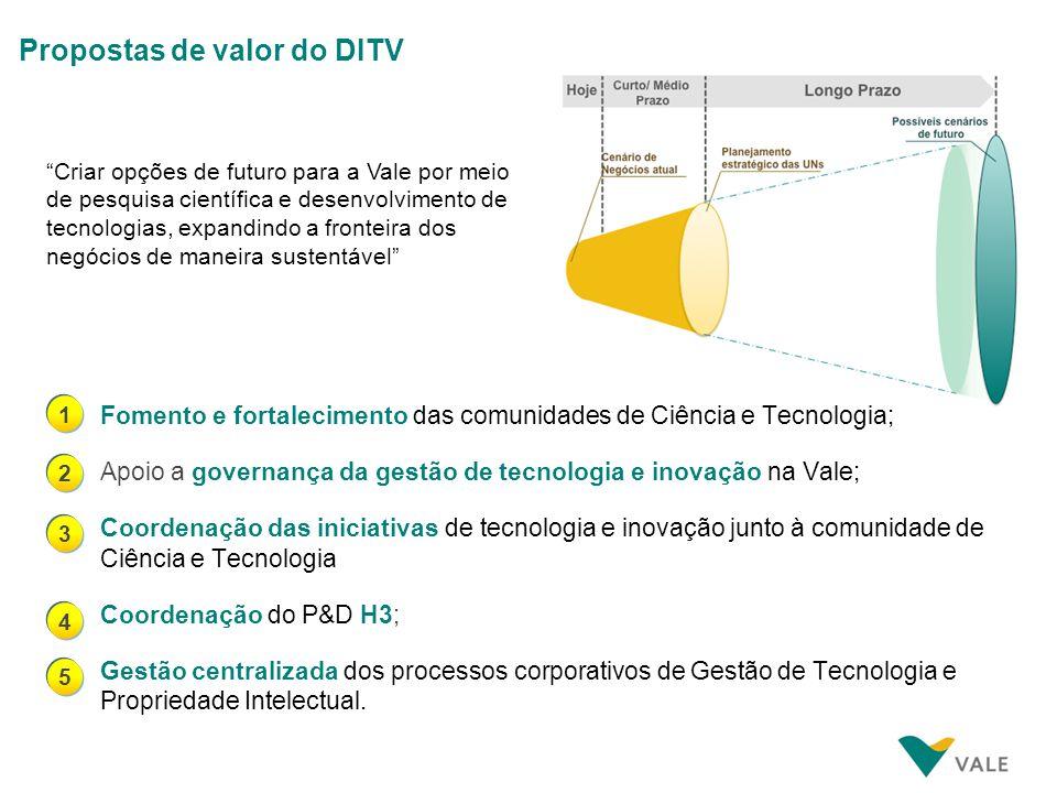 Fomento e fortalecimento das comunidades de Ciência e Tecnologia; Apoio a governança da gestão de tecnologia e inovação na Vale; Coordenação das inici