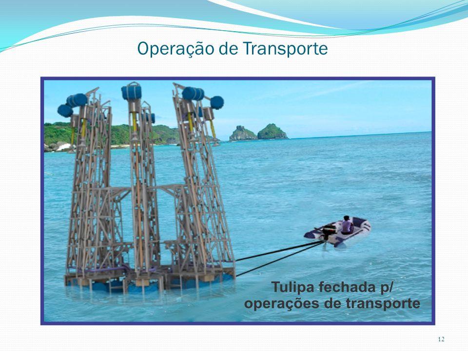 Operação de Transporte 12
