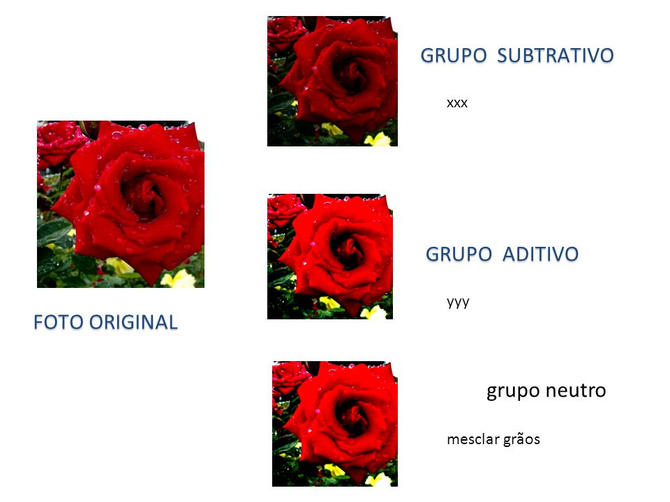 grupo neutro mesclar grãos GRUPO SUBTRATIVO GRUPO ADITIVO xxx FOTO ORIGINAL yyy