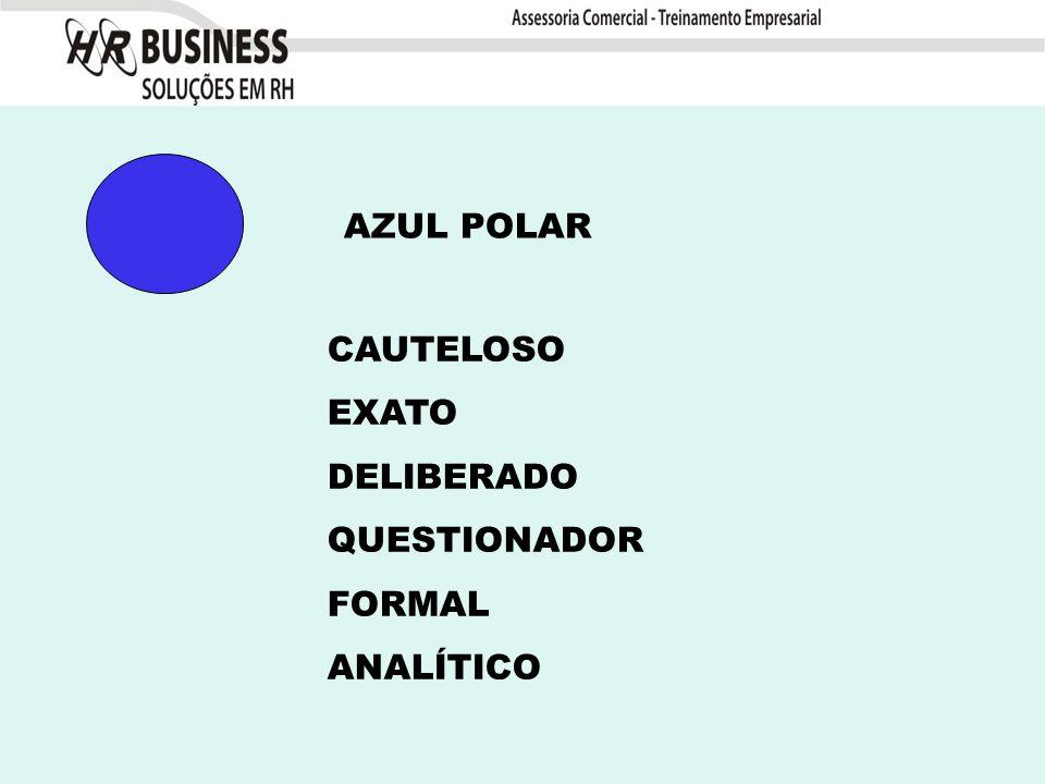 AZUL POLAR CAUTELOSO EXATO DELIBERADO QUESTIONADOR FORMAL ANALÍTICO