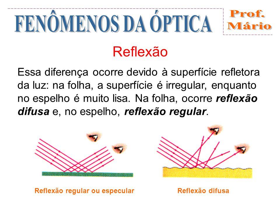 Reflexão Essa diferença ocorre devido à superfície refletora da luz: na folha, a superfície é irregular, enquanto no espelho é muito lisa.