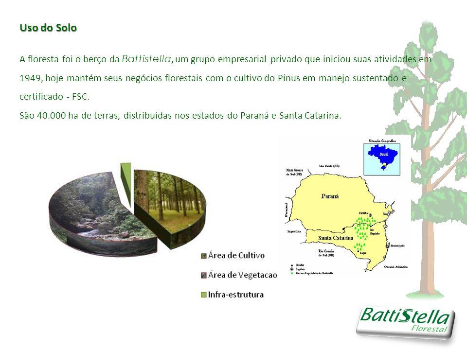 Uso do Solo A floresta foi o berço da Battistella, um grupo empresarial privado que iniciou suas atividades em 1949, hoje mantém seus negócios florestais com o cultivo do Pinus em manejo sustentado e certificado - FSC.