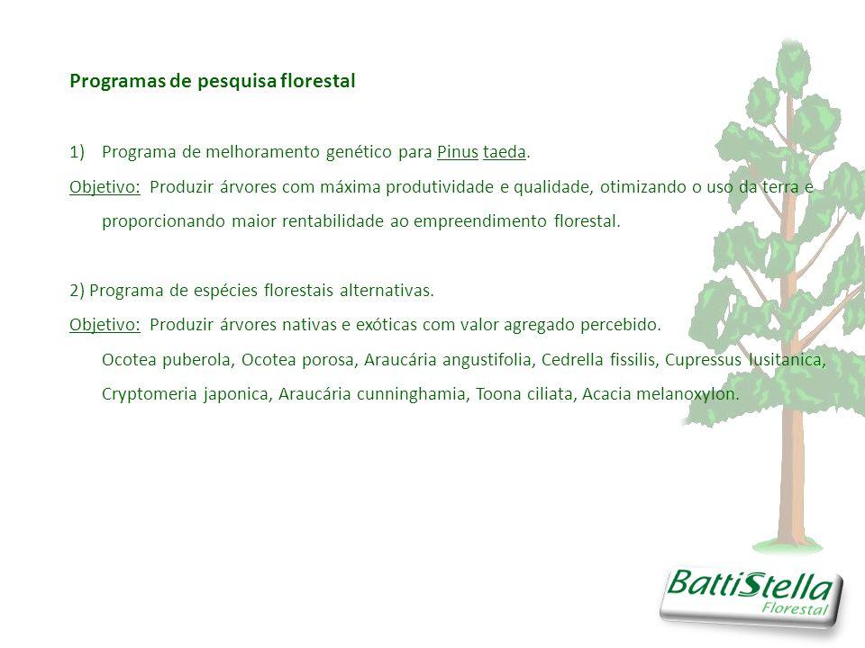 Programas de pesquisa florestal 1)Programa de melhoramento genético para Pinus taeda.