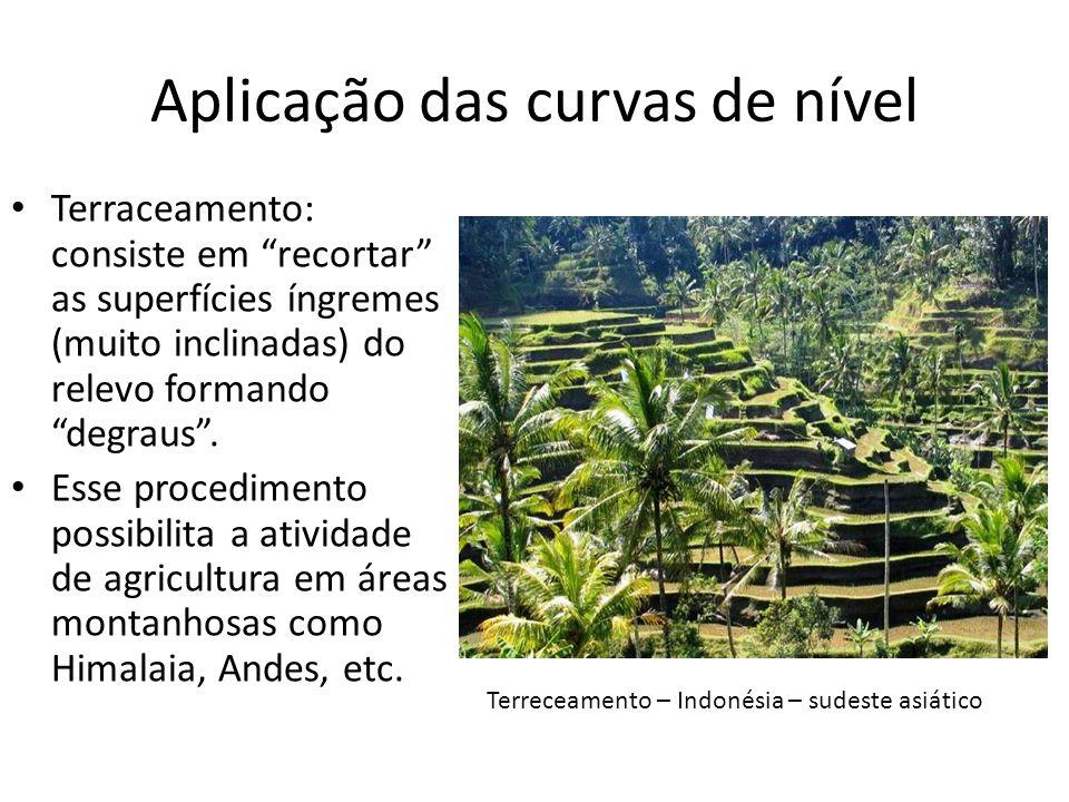 Aplicação das curvas de nível Terraceamento: consiste em recortar as superfícies íngremes (muito inclinadas) do relevo formando degraus. Esse procedim