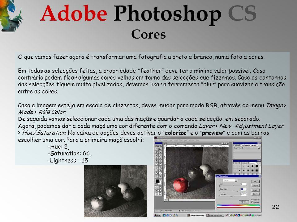 22 Cores Adobe Photoshop CS O que vamos fazer agora é transformar uma fotografia a preto e branco, numa foto a cores.