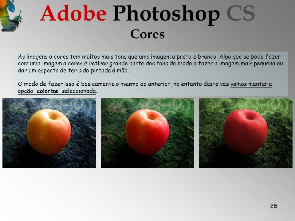 25 Cores Adobe Photoshop CS As imagens a cores tem muitos mais tons que uma imagem a preto e branco.