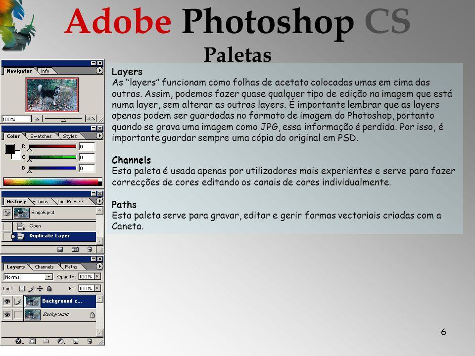 6 Paletas Adobe Photoshop CS Layers As layers funcionam como folhas de acetato colocadas umas em cima das outras.