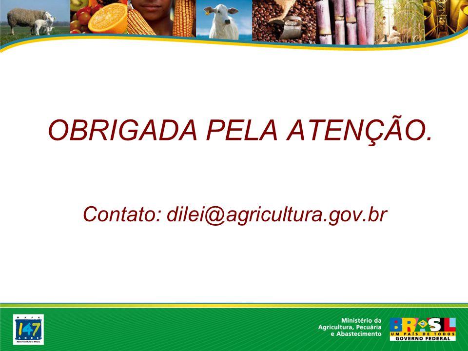 OBRIGADA PELA ATENÇÃO. Contato: dilei@agricultura.gov.br