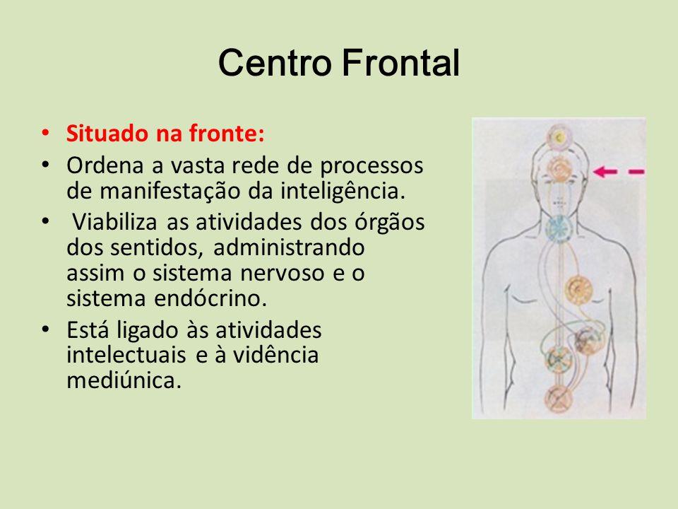 Centro Frontal Situado na fronte: Ordena a vasta rede de processos de manifestação da inteligência.